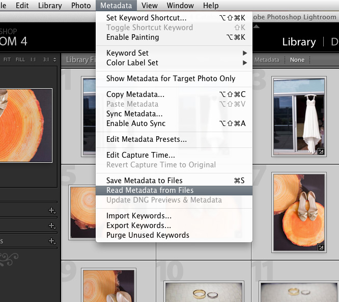 how to update Lightroom 4 catalog with XMPs